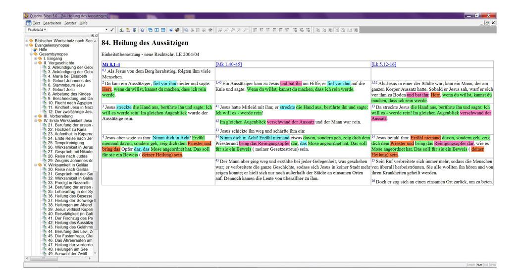 BIBELDIGITAL Quadro Bibel 5.0